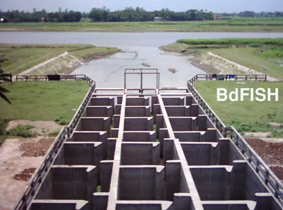 Sariakandi fish pass: view of the Bangali river from the fish pass
