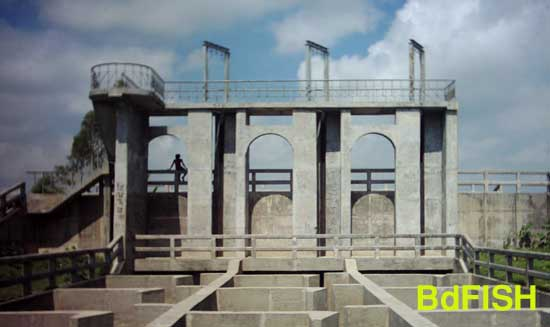 Sariakandi fish pass as viewed from the Jamuna river: showing passage and control uniteSariakandi fish pass as viewed from the Jamuna river: showing passage and control unite