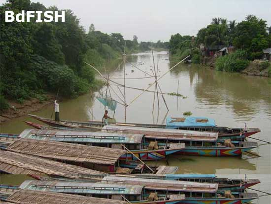Passenger's boat in Nagar river; Location: Singra, Natore
