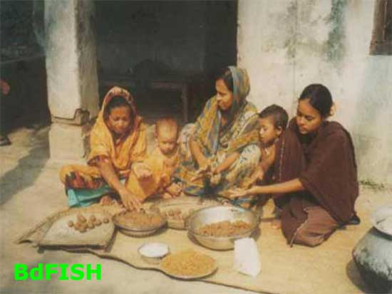 Fish feed preparation