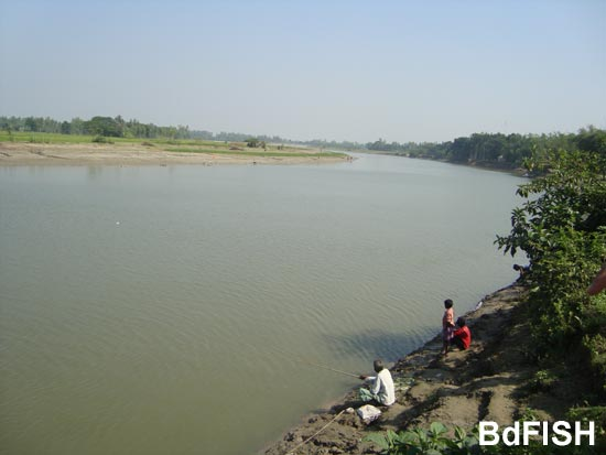 Partial view of River Bangali