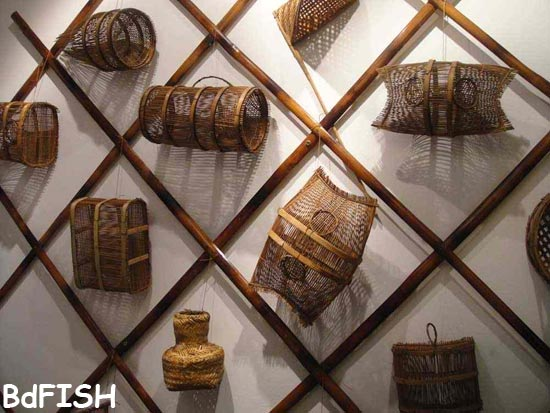 Different types of fishing gears in Fish Museum and Biodiversity Center, BAU