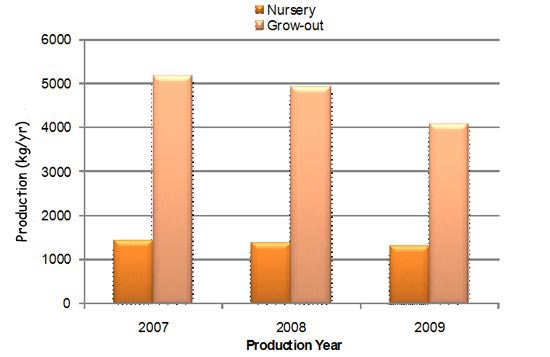 Average fish production in nursery and grow-ort ponds