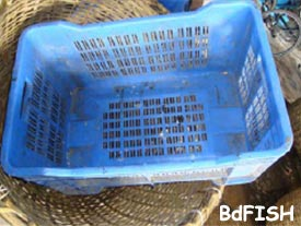 Plastic cage used in fish icing