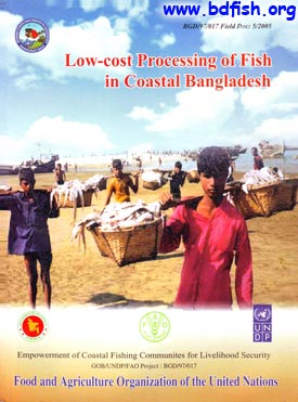 Low-cost Processing of Fish in Coastal Bangladesh