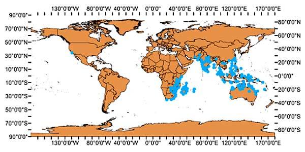 Figure 4: World Distribution of Glossogobius giuris (GBIF 2019)