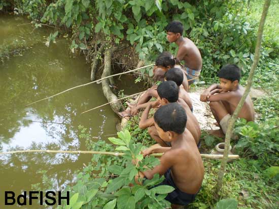Group fishing using fishing rods in ditches: 02