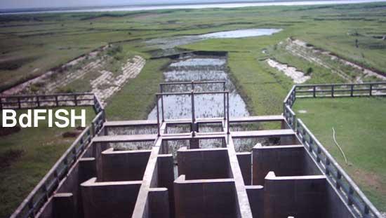 Sariakandi fish pass: view of the Jamuna river from the fish pass