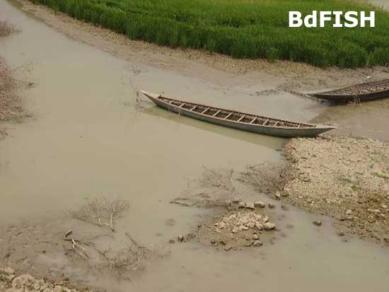 Small dingi boat in Boalkhali beel; Location: Chatmohar, Pabna