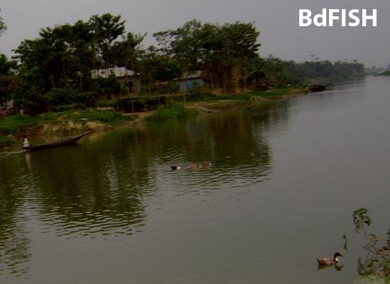 Partial view of a river runs through Hakaluki Haor