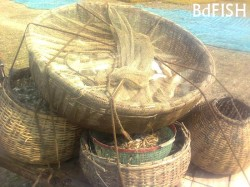 Traditional Bamboo made Container used in fish transportation