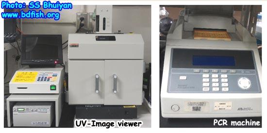 UV Image Viewer and PCR Machine