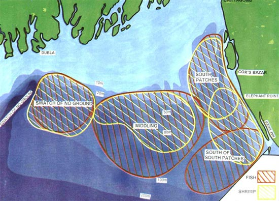 Fishing grounds and distribution of fish and shrimps in the continental shelf of Bangladesh. (Source: Rahman et. al., 1995)