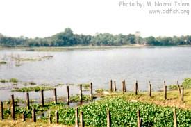 Baluhar Baor (partial view)
